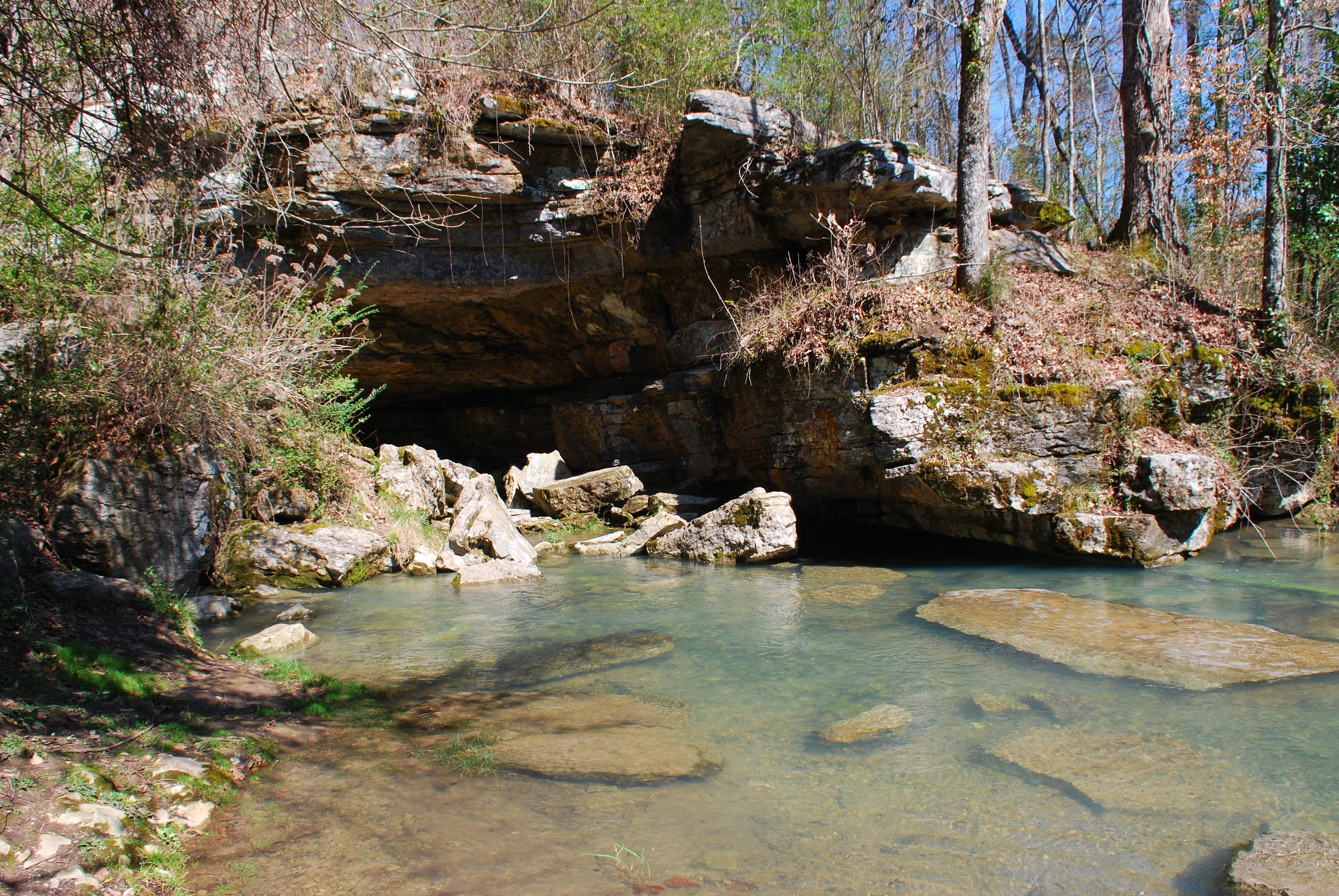 Tennessee marion county sequatchie - Dsc_6393
