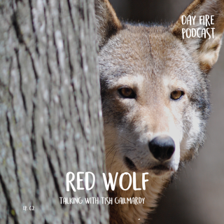 Day_Fire_Tiles_Red_Wolf