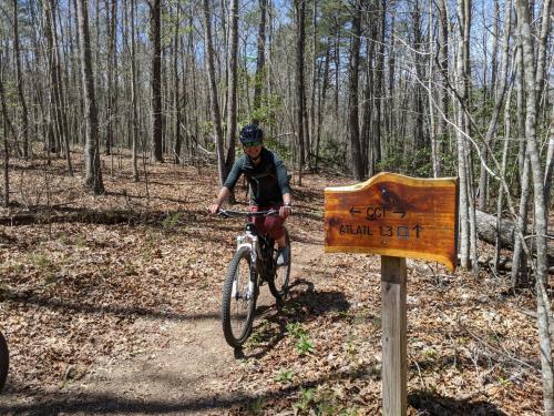 Lori-Moss-Mountain-Biking-CCT-5-points-scaled