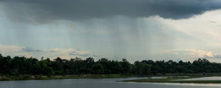 Rainfall-2020-hero-gettyimages-1041162760